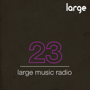 Large Music Podcast #23 mixed by Roland Nights
