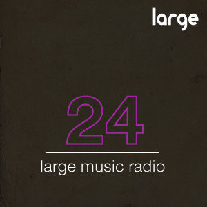 Large Music Podcast #24 Mixed by Jeff Craven