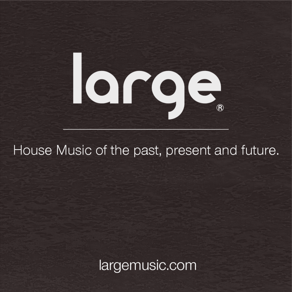 Large Music appears on Most Charted Labels of 2013 via Resident Advisor.