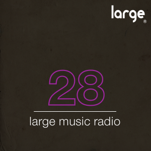 Large Music Podcast #28 mixed by The Checkup