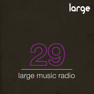Large Music Podcast 29 mixed by Sebb Junior