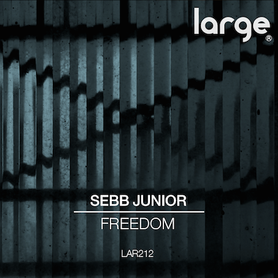 Sebb Junior | Freedom reviewed on This Is Why We Dance